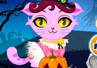 Halloween Kitten Dress Up